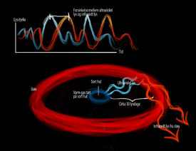 Process: dust falls into the black hole and emits high energy radiation