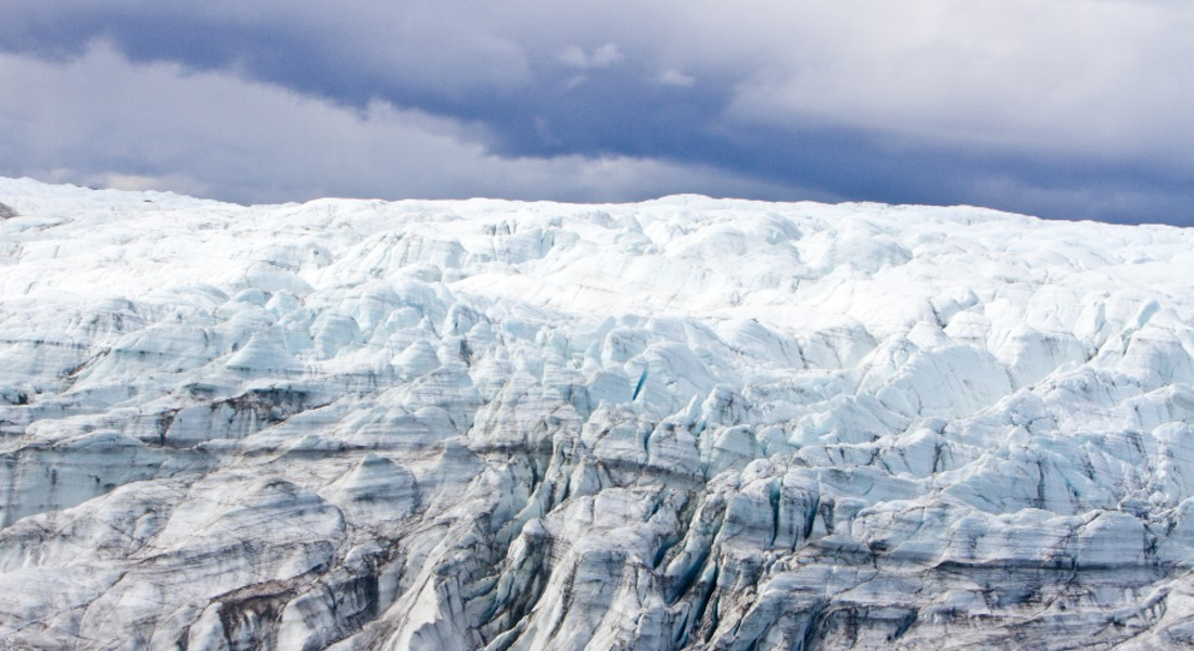For the first time ever, researchers have found fossils under Greenland's ice sheet that are so large and well preserved that they can be seen with the naked eye. The fossils reveal several million years of details about climate and plant life in Greenland according to the UCPH researcher behind the discovery.
