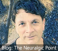 Link to blog: The Neuralgic Point