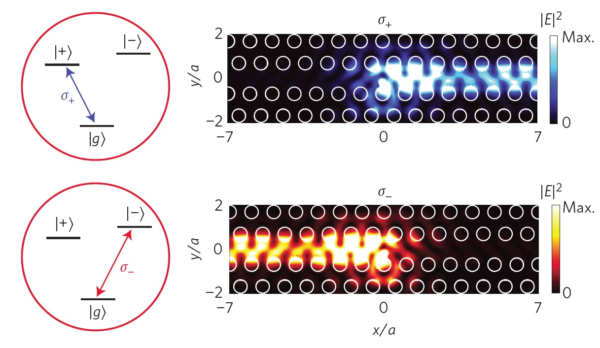 Calculated emission of circular transition dipoles into a photonic crystal waveguide