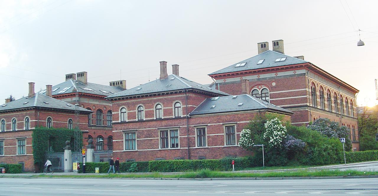 hæmorider i skeden geologisk museum København